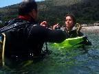 Bautizos de Buceo, Iniciación al Naturalismo Subacuático
